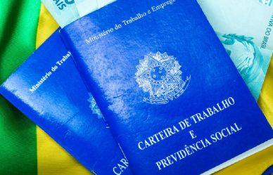 """Governo federal institui a """"carteira verde e amarela"""" para jovens e traz novas alterações para a CLT 1"""